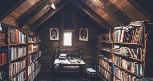 this but with a glass ceiling and a little day bed so you can read and have the ...