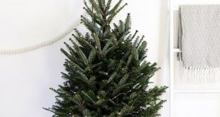 Adorable Mini Christmas Trees For Small Homes 2019 Sometimes less is moreespec...